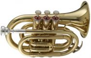 Its a pocket trumpet